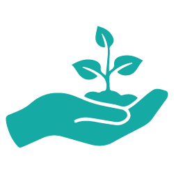 hand holding a plant icon - get-out-of-debt success stories - prudent financial solutions testimonials